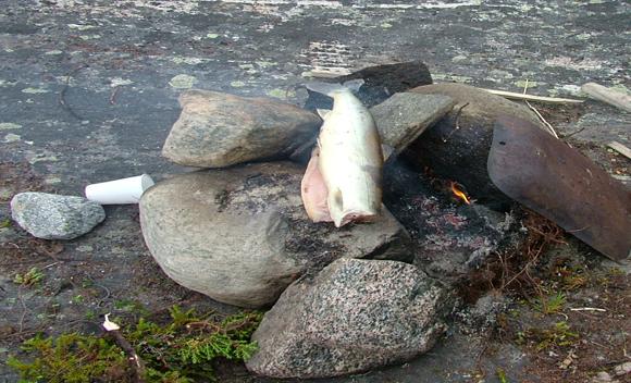 Fiskens og Smagens Dag