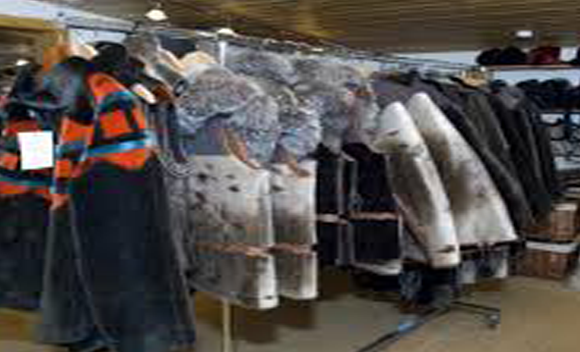 Grønlandsk designede sælskindsfrakker