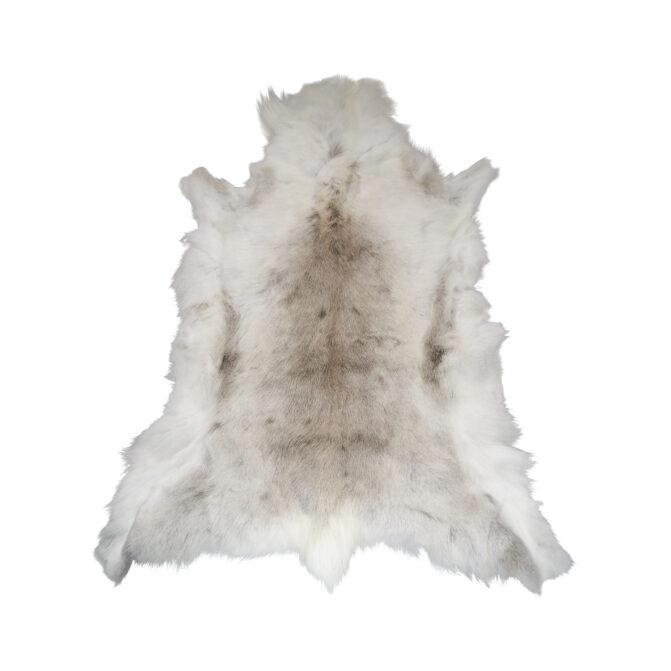 Grønlandsk rensdyrskind